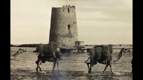 ابوظبي قديما